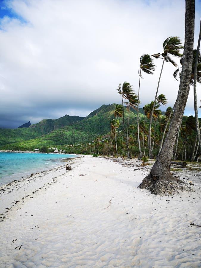 Tahiti. French Polynesia Bora Bora. French polynesia. , sky, vacation stock photography