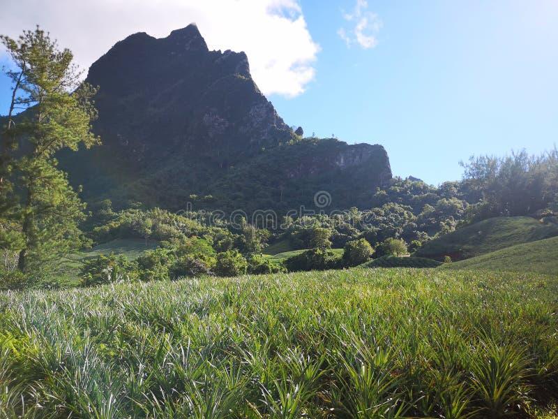 Tahiti. French polynesia  . french polynesia. , sky, vacation royalty free stock image