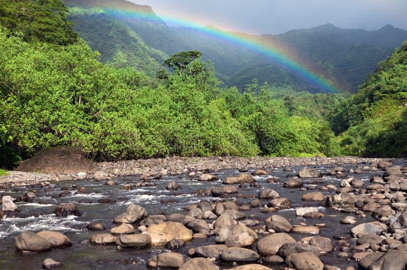 tahiti polynesia Rio e arco-íris da montanha foto de stock