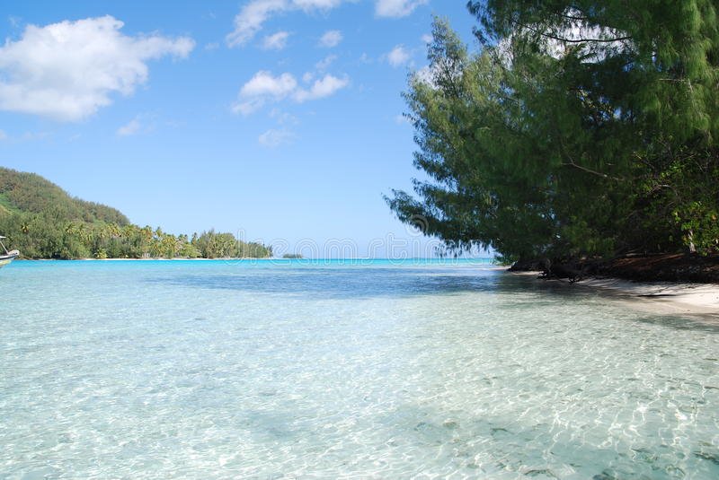 Tahiti. Small island in Tahiti with clear blue sea and green mountains in the background royalty free stock photography