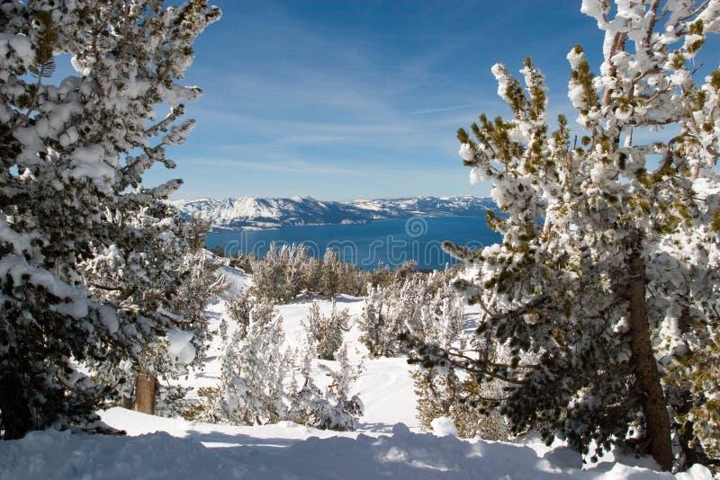 Tahoe湖视图 免版税库存图片