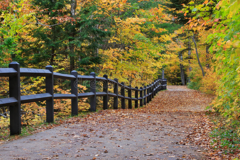 Tahquamenon在秋天下跌道路 库存照片
