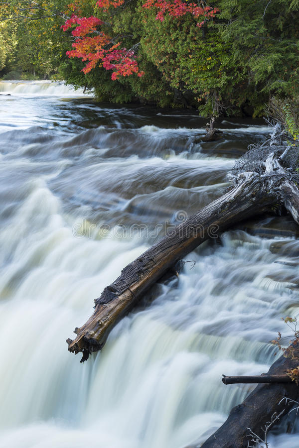 Tahquamenon abaissent des automnes image stock