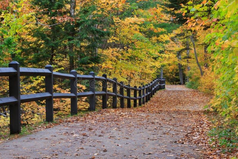 Tahquamenon cai trajeto no outono foto de stock