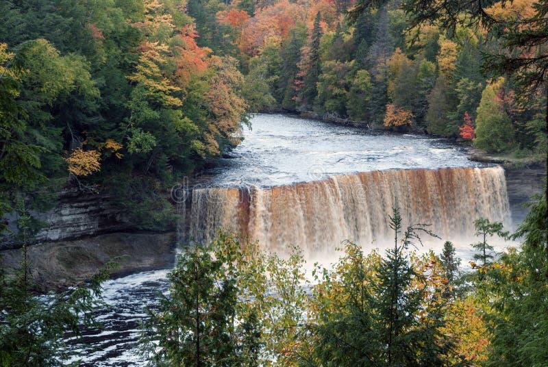 Tahquamenon supérieur tombe sur la rivière de Tahquamenon dans la péninsule supérieure orientale du Michigan, Etats-Unis images stock