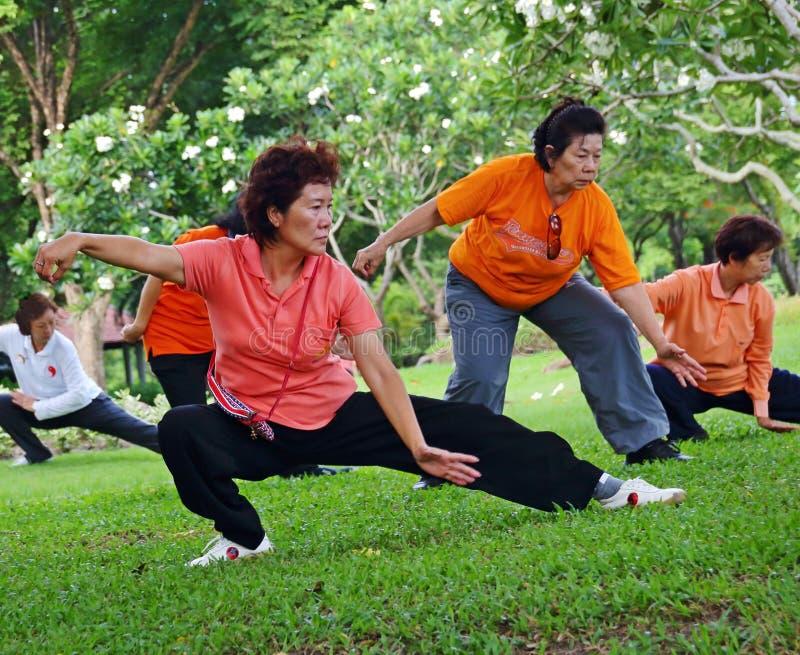 Tai Chi royalty free stock photos