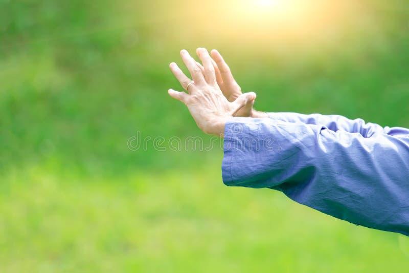 Tai Chi Chuan al sole nella natura fotografia stock