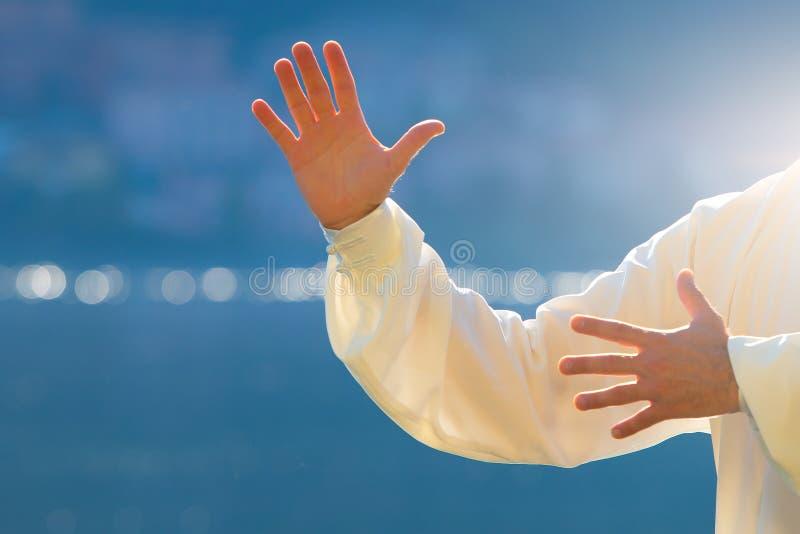 Tai chi chuan handen vector illustratie