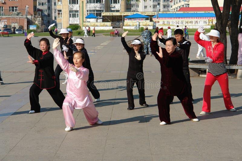 Tai Chi in de ochtend, China royalty-vrije stock foto