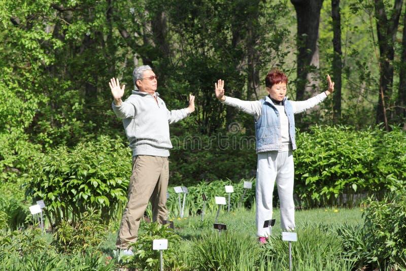 Download Tai Chi in de tuin redactionele stock foto. Afbeelding bestaande uit ruimte - 54075918
