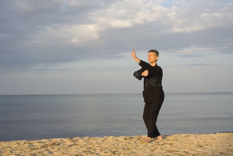 Tai chi - houdingsvuist onder elleboog stock foto's