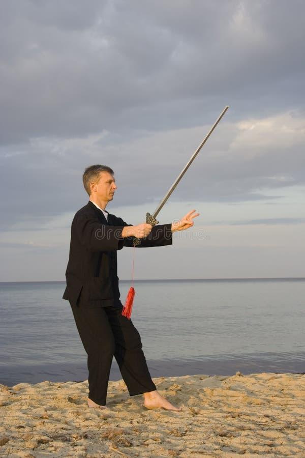 Tai chi - posture shooting the wild goose royalty free stock image