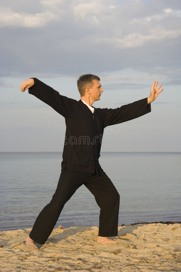 Tai chi - posture single whip stock image