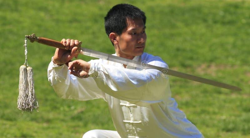 Tai chi-Qigong van de wereld Dag in Central Park royalty-vrije stock foto