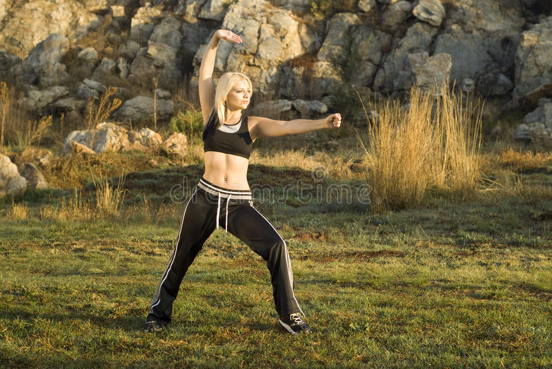 Download Tai Chi woman in park stock image. Image of meditating - 21516209