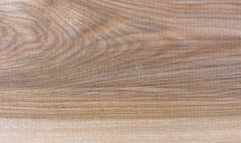 Natural Taiga birch wood grain texture pattern background. Taiga birch wood grain texture pattern background royalty free stock photos