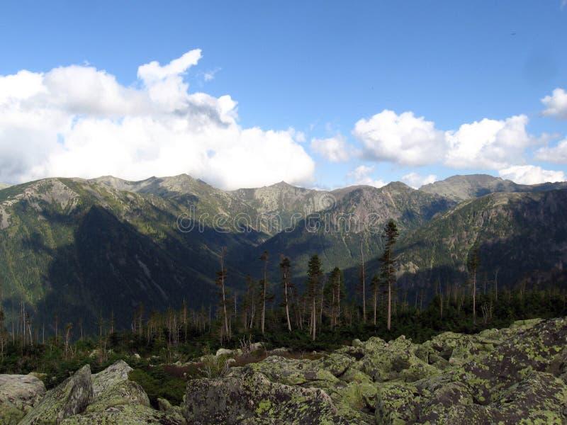Taiga e montanhas de Sayan imagem de stock