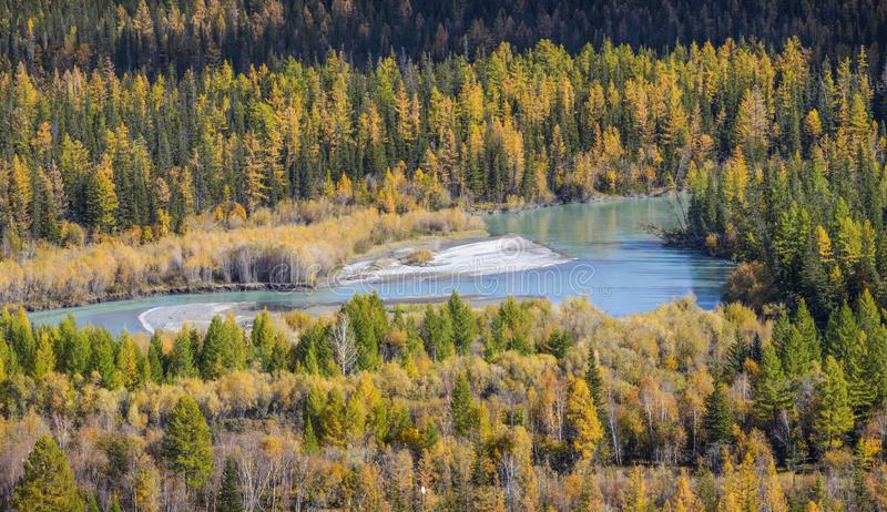 Taiga river, view from above. Autumn view, daylight. Wild places of Siberia royalty free stock photography