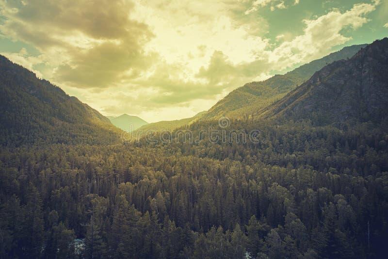 Taiga sibérien de montagne, montagnes dans les nuages, beau paysage atmosphérique sombre avec la forêt dense et hautes montagnes  photographie stock libre de droits
