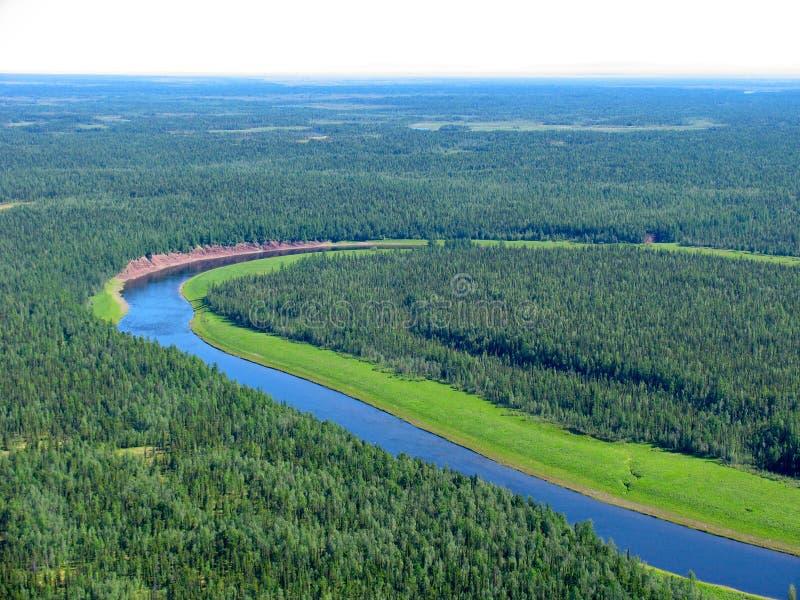 Taiga siberiano - vista aerea immagini stock libere da diritti