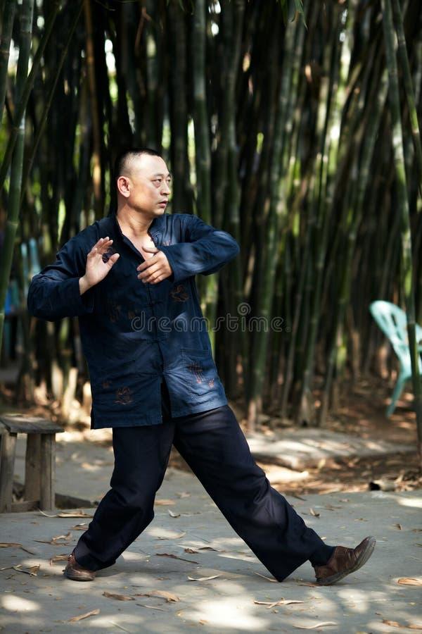 Taiji Quan στοκ εικόνες