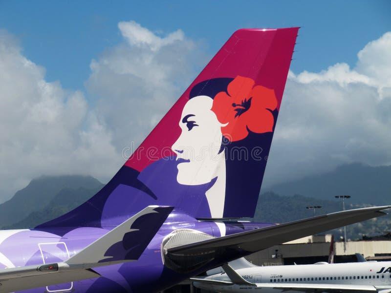 Tail of Hawaiian Airlines plane, Oahu, Hawaii stock image