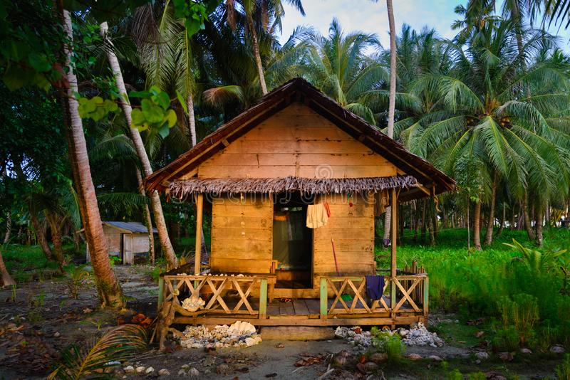 Tailana, Indonesia - march 13, 2019: beach bungalow amid lush green tropical coconut palm tree forest, tourist resort wood cabin. Basic hut retreat in the stock photography