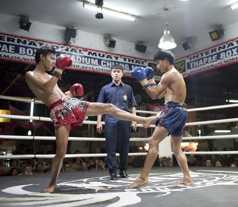 Tailandés de Muay en Chiang Mai fotos de archivo