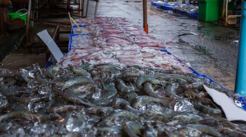 Tailandia, animal, Calamari, primer, cocinando imagenes de archivo