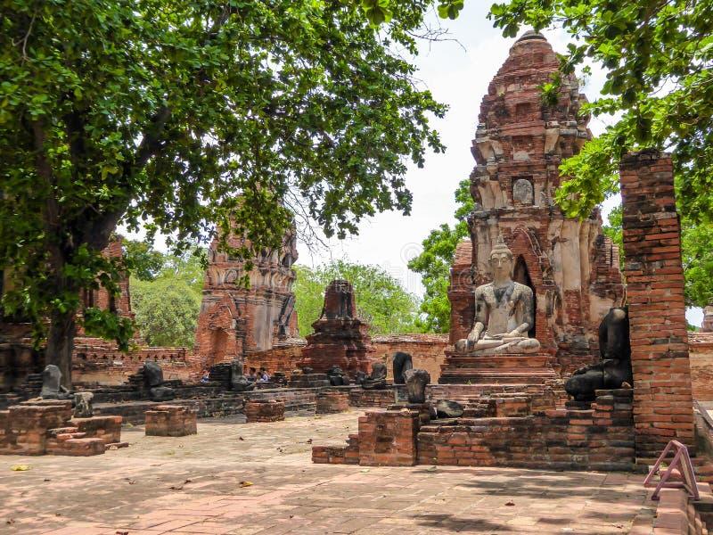 Tailandia - jardines del templo de Ayutthaya fotografía de archivo