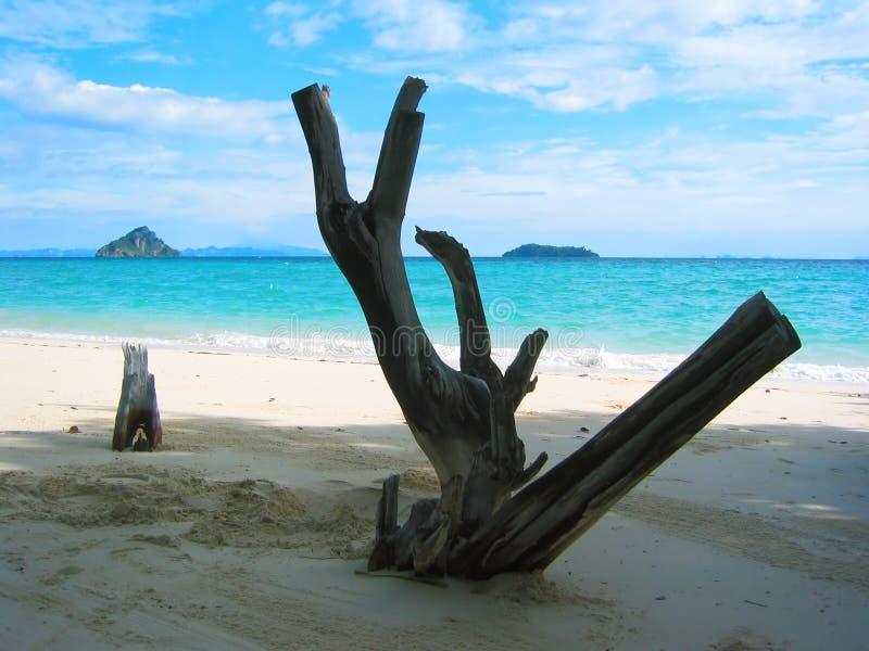 Tailandia - playa VI del paraíso imagen de archivo libre de regalías