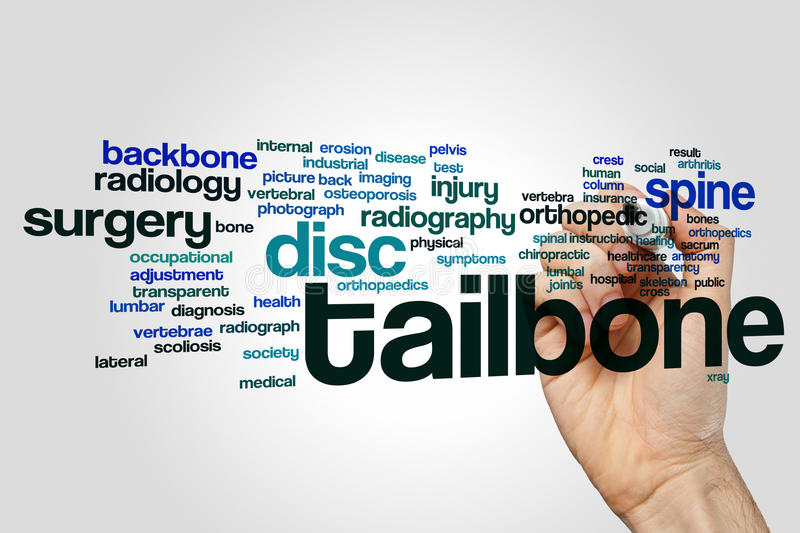 Tailbone word cloud. Concept on grey background stock photo