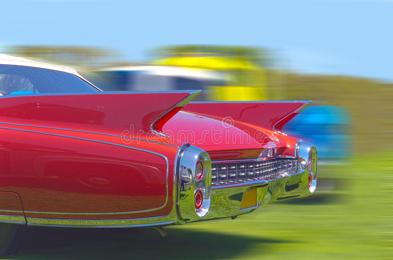Tailfins royalty free stock images