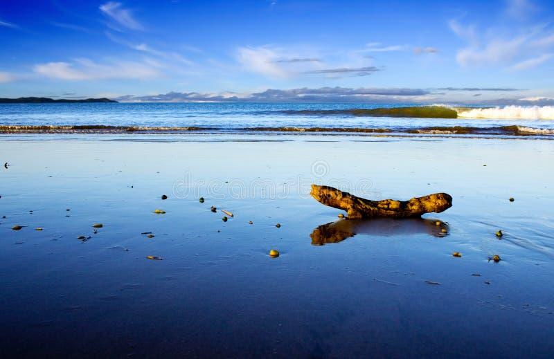 taipa zealand места пляжа красивейшее новое стоковые фото