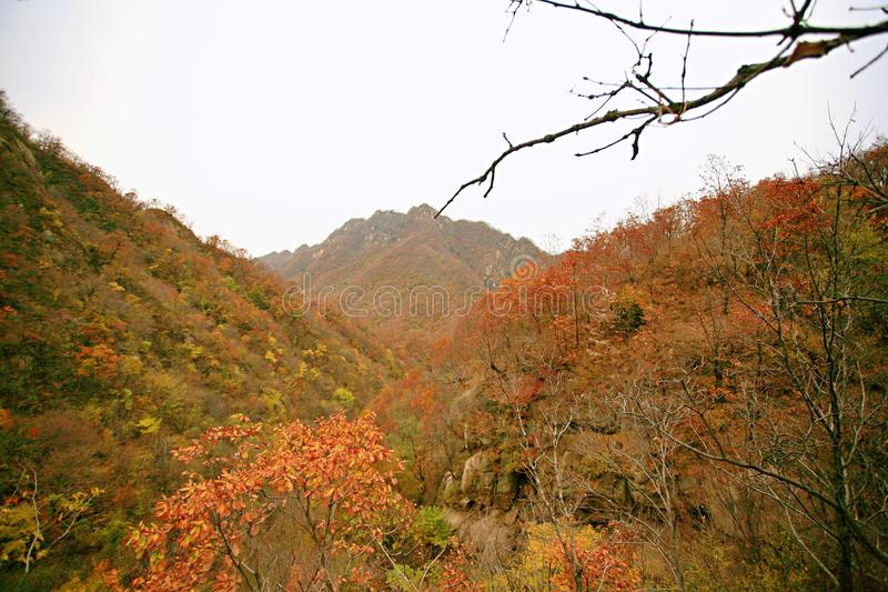 Taishan occidental, Ruyang photo stock