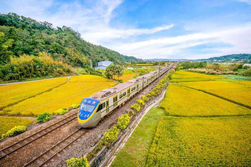 Train on the field in miaoli, taiwan. Since Taiwan is heavily urbanized with a high population density, railways have played an important part in domestic royalty free stock photography