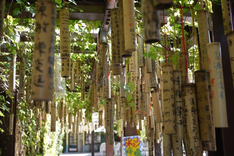 Taiwan que deseja o bambu fotografia de stock royalty free