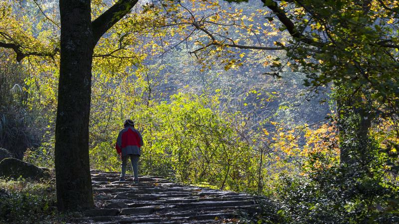 Taizhou-Herbstlandschaft stockfoto