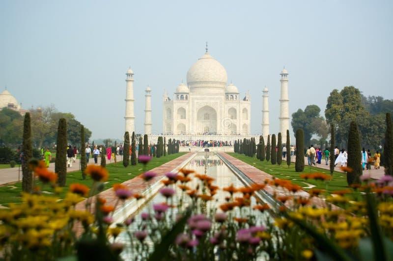 Download Taj Mahal Agra India stock photo. Image of outside, blossoming - 4497774