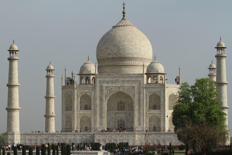 Taj Mahal in Agra Indien stockfotos