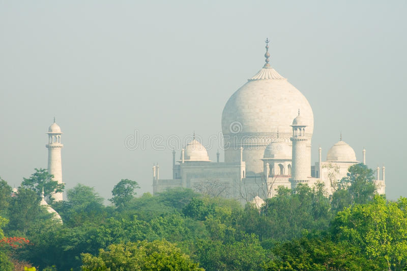 Taj Mahal, curso da Índia, fundo fotografia de stock royalty free