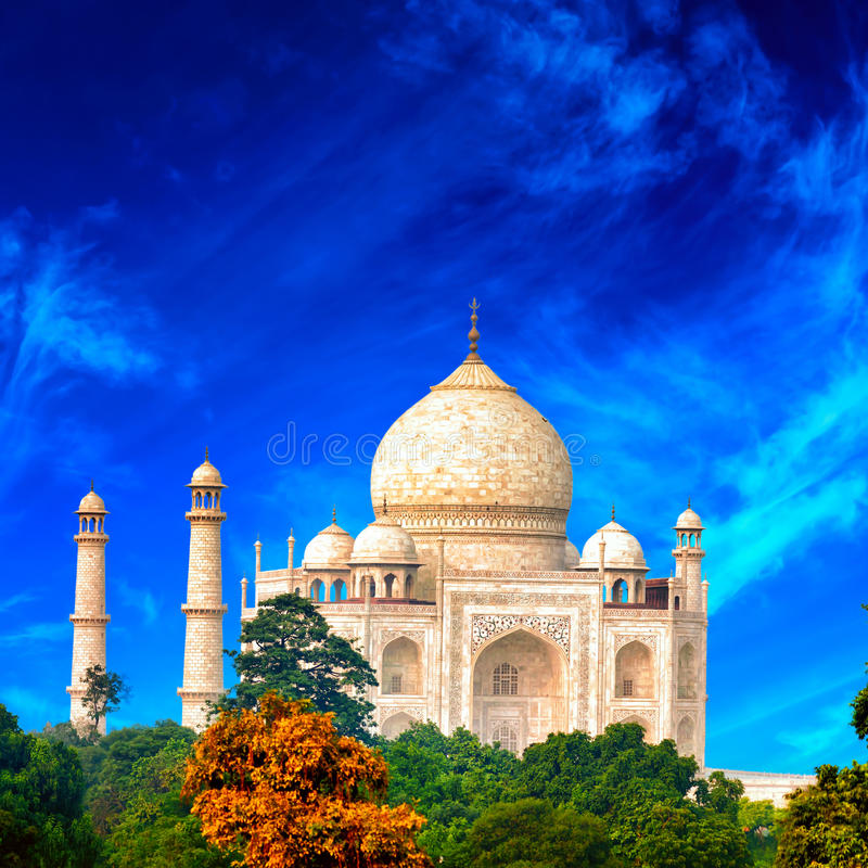 Taj Mahal, India fotografia de stock royalty free