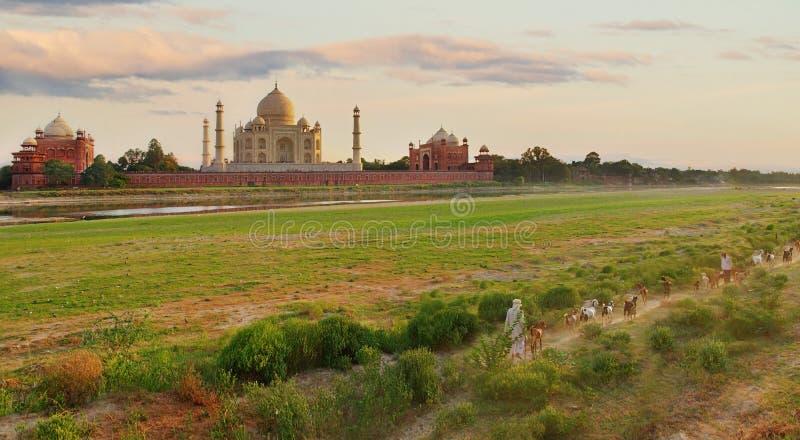 Taj Mahal en Agra, la India imágenes de archivo libres de regalías