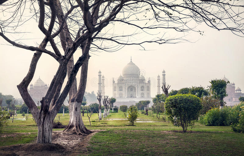 Taj Mahal en bomen in de tuin van Mehtab Bagh stock foto