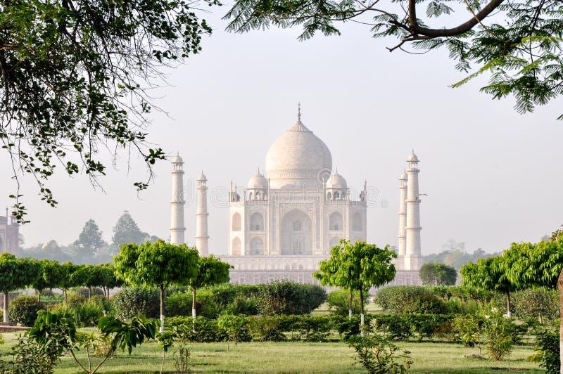 Taj Mahal från måneträdgårdarna, Agra Indien arkivfoto