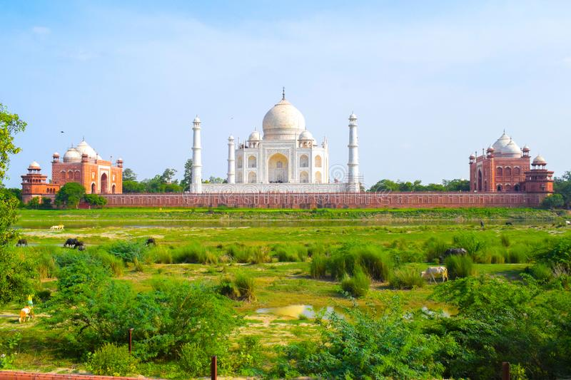Taj Mahal full view during day time in Agra India, The Taj among 7 Wonders of the World view stock images