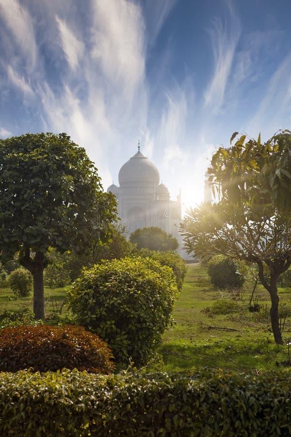 Taj Mahal i Agra, Uttar Pradesh, Indien fotografering för bildbyråer
