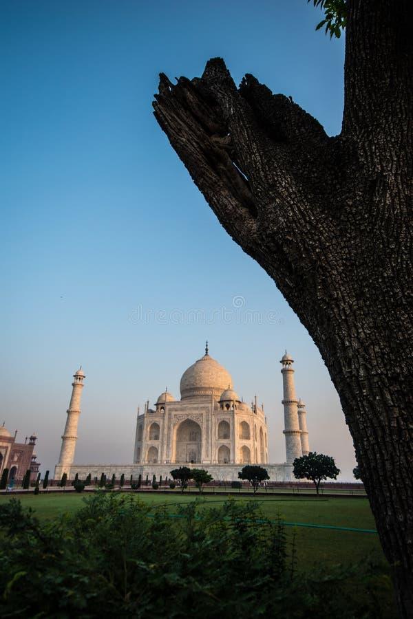 Taj Mahal-Komplex Agra lizenzfreies stockfoto