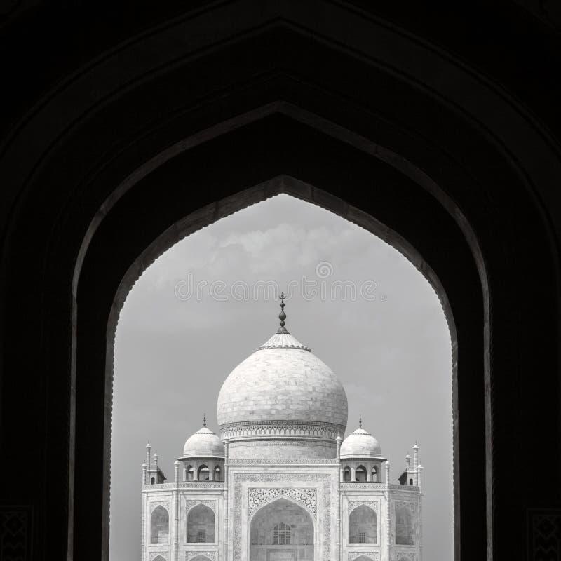 Taj Mahal nel telaio immagini stock libere da diritti