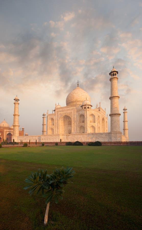 Taj Mahal trawnika przed domem wschodu słońca ranku Ognisty niebo fotografia royalty free